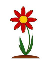 Floarea_rosie
